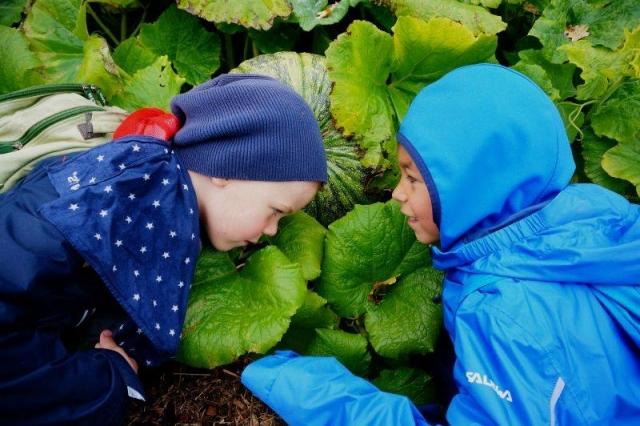 dla dzieci karkonosze izery agroturystyka dolina harmonii
